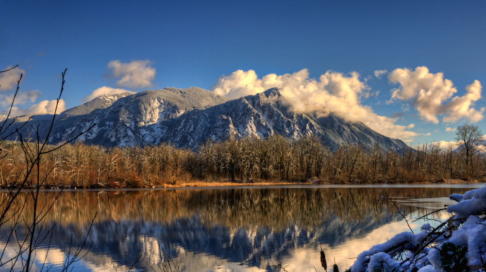 Snowy Mt Si beyond the brush by Sandy Horvath